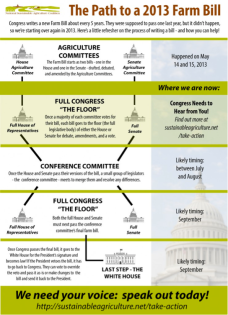 A refresher on the process of writing a bill and the ways you can help.